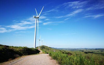 TSR Wind, unique services